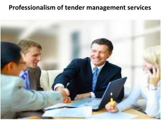 Professionalism of tender management services