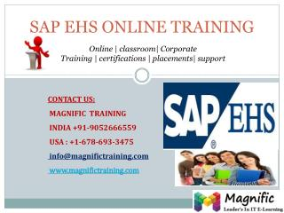 SAP EHS ONLINE TRAINING IN SOUTH AFRICA