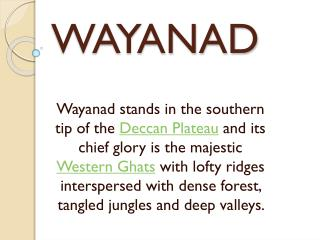 WAYANAD TOUR PACKAGE FROM KUMAAR HOLIDAYS