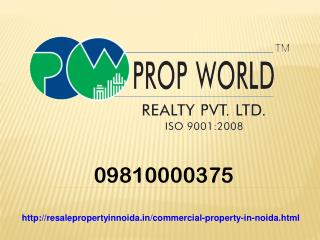 09810000375 Commercial Property For Sale And Rent In Noida