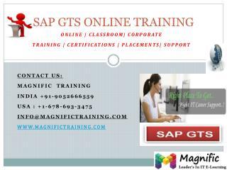 SAP GTS ONLINE TRAINING IN BANGALORE