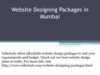 Website Designing Packages in Mumbai