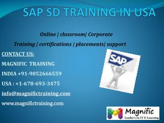 sap sd training in usa