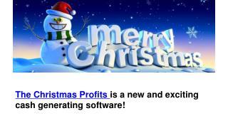 Christmas Profits Software
