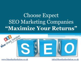 Choose Expect SEO marketing companies - Maximize Your Return