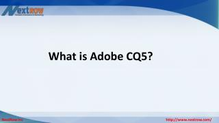 What is Adobe CQ5