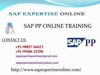 Sap Pp Online Training Classes in Us
