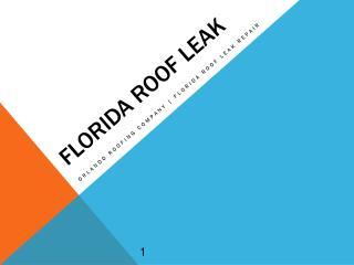 Orlando Roofing Company