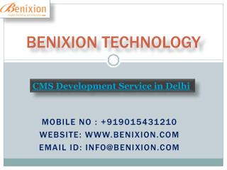 CMS Development Service in Delhi