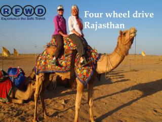 tour and travels in jaipur