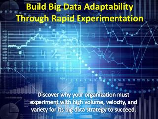 Build big data adaptability through rapid experimentation