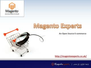 Hire Magento Developer - Magento Experts