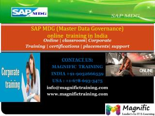 SAP MDG ONLINE TRAINING IN UK