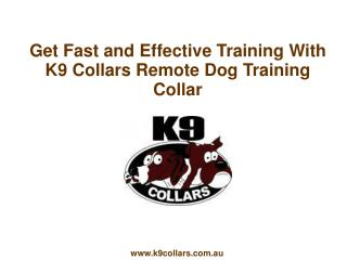 Get Fast and Effective Training With K9 Collars
