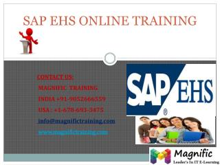 SAP EHS ONLINE TRAINING IN UK