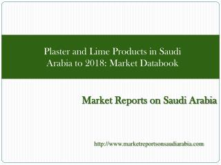 Plaster and Lime Products in Saudi Arabia to 2018: Market Da