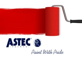 Make Your Home Attractive With ASTEC Paints