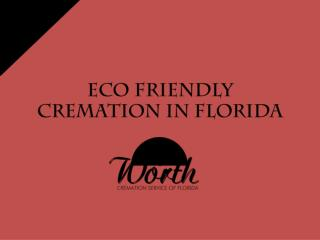 Eco friendly cremation service