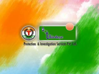 VIP security service, Private investigator