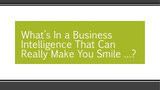 What's In a Business Intelligence?