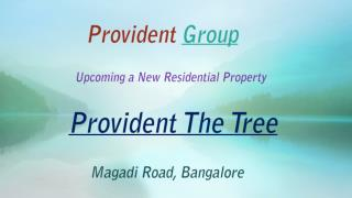 Provident The Tree