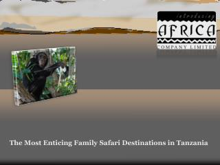 The Most Enticing Family Safari Destinations in Tanzania
