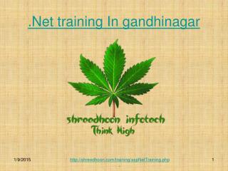 .net training for bigginer