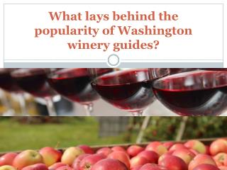 What lays behind the popularity of Washington winery guides
