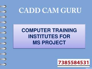 ComputeComputer Training Institutes For MS Project In Nagpur