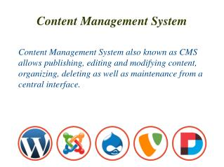 Content Management System for Business Websites | Burgeon So