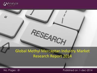 Global Methyl Mercaptan Industry Market Research Report 2014