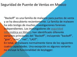 seguridad informática en México