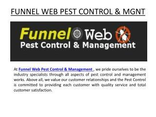 Cockroach Control Australia