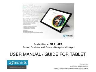 ZoomCharts User Guide Pie Chart Donut One Level with Custom