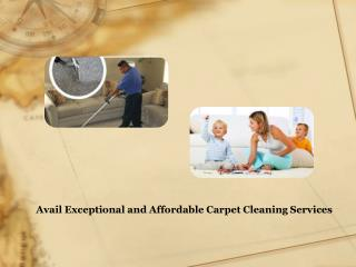 Avail Exceptional and Affordable Carpet Cleaning Services