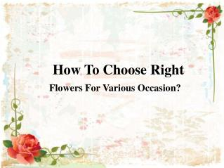 How To Choose Right Flowers For Various Occasion?