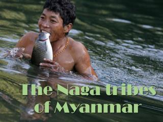 The Naga tribes of Myanmar