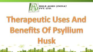 Therapeutic Uses And Benefits Of Psyllium Husk