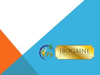 Ibogaine Treatment Costs