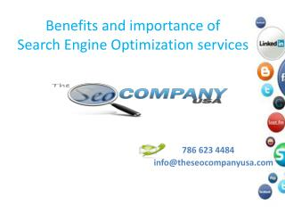 Benefits and importance of search engine optimization servic