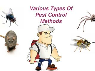 Various Types Of Pest Control Methods