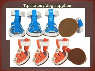 Tips, tricks and dog supplies to care for an ill pet