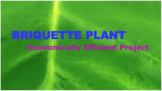 Briquette Plant– Economically Efficient Project