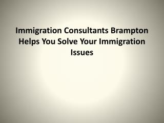 Immigration Consultants Brampton Helps You Solve Your Immigr