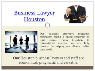 Houston Business Litigation