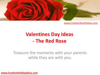 Valentines Day Ideas - The Red Rose