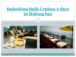 Indochina Sails Cruise 3 Days in Halong bay
