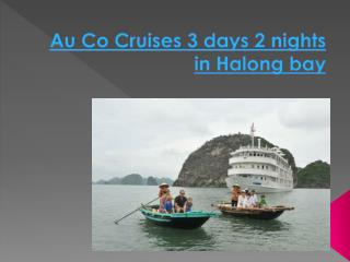 Au Co Cruises 3 days in Halong bay