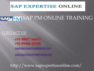 sap pm online training in hyderabad,india