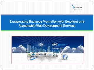 Business Promotion with Excellent and Reasonable Web Develop